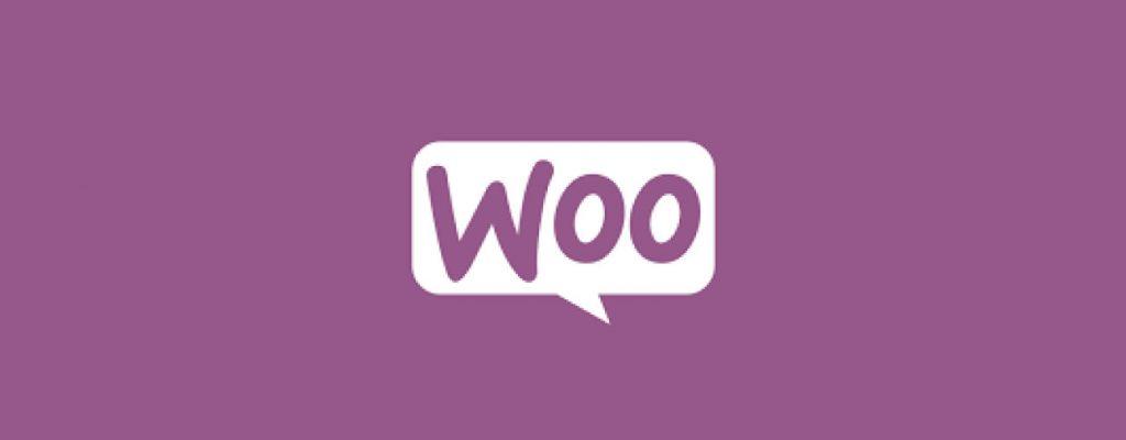 Criar ecommerce WordPress